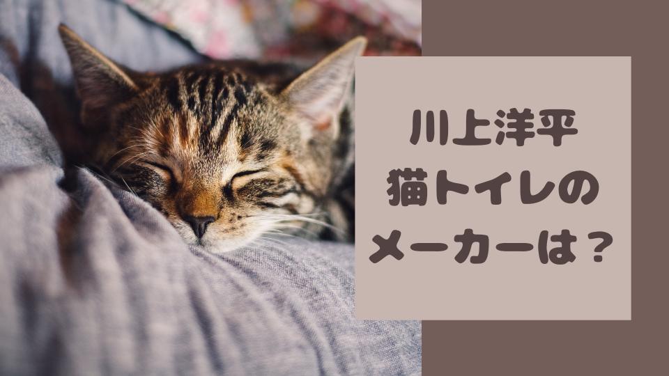川上洋平の猫トイレのメーカー