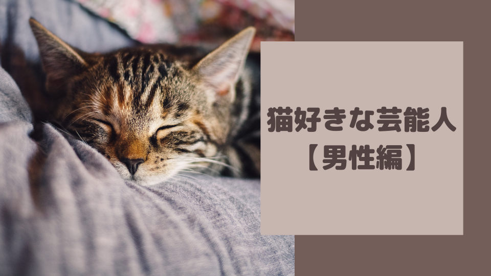 猫好きな芸能人 【男性編】
