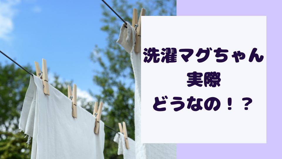 洗濯マグちゃんは効果なし?